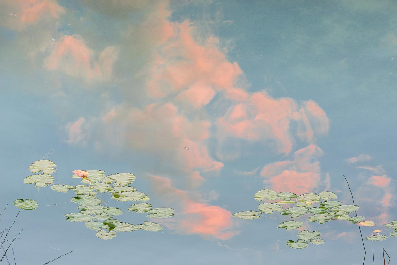 Reflets sur le lac de Morat